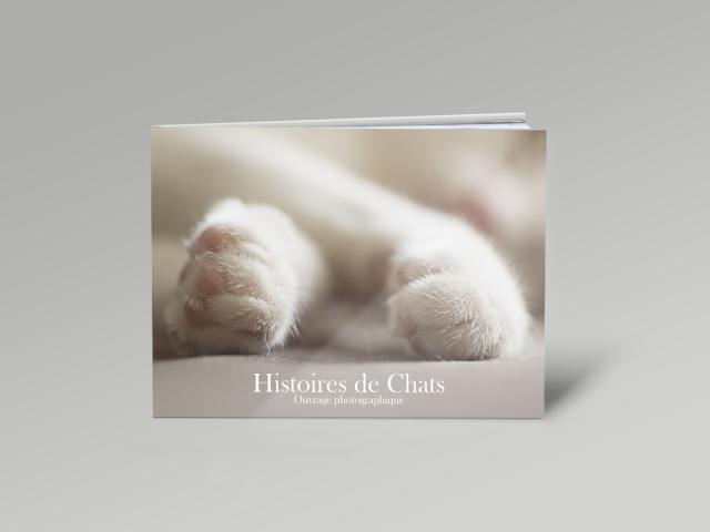 livre photographie artistique sur les chats
