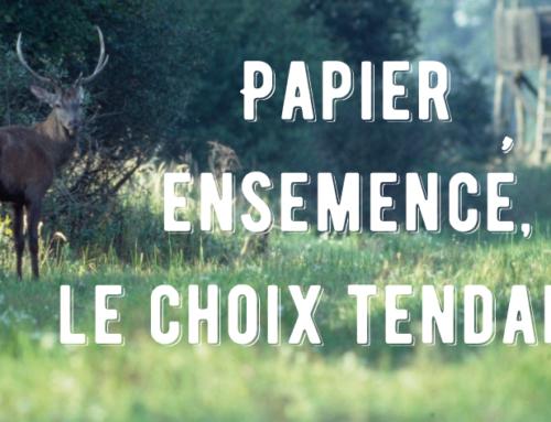 Papier ensemencé, le choix tendance