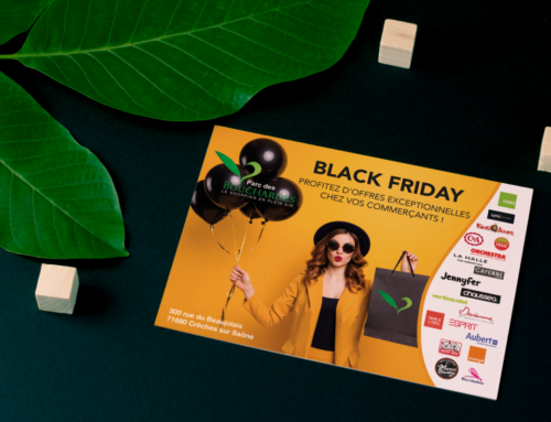 Flyer Black Friday Parc des Bouchardes à Crêches sur Saône