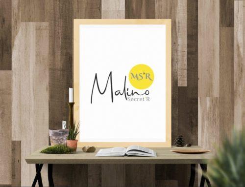 Logotype Malino Secret-R